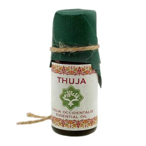масло Zeitun Зейтун эфирное Масло Туи (Флакон 10 мл) масло zeitun зейтун эфирное масло перуанский бальзам флакон 10 мл